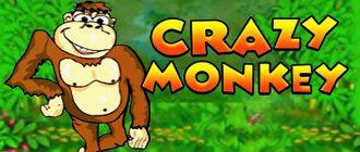 Fresh Casino Crazy Monkey